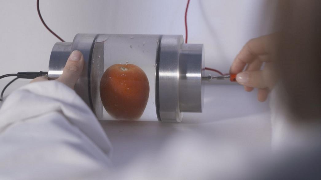 الصعق بالكهرباء لعصر الفواكه وتقشير الخضر!