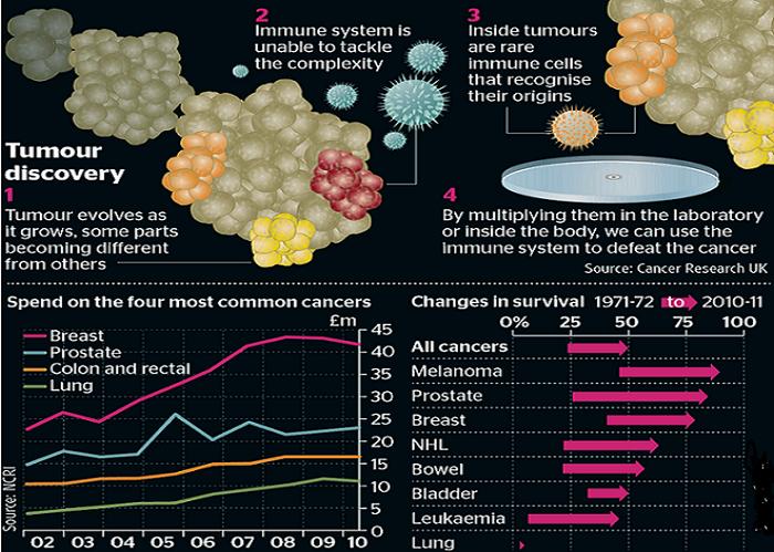 اكتشاف مذهل للقضاء على السرطان بدون مضاعفات