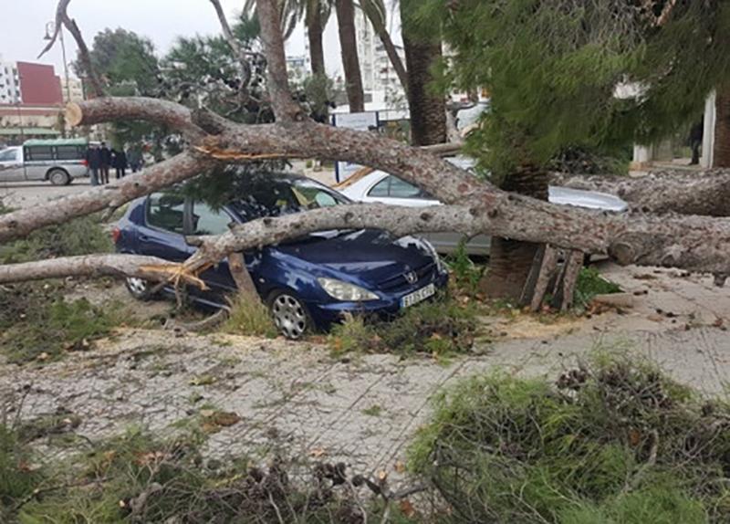 بالفديو: نجاة سيارة من كارثة بأعجوبة