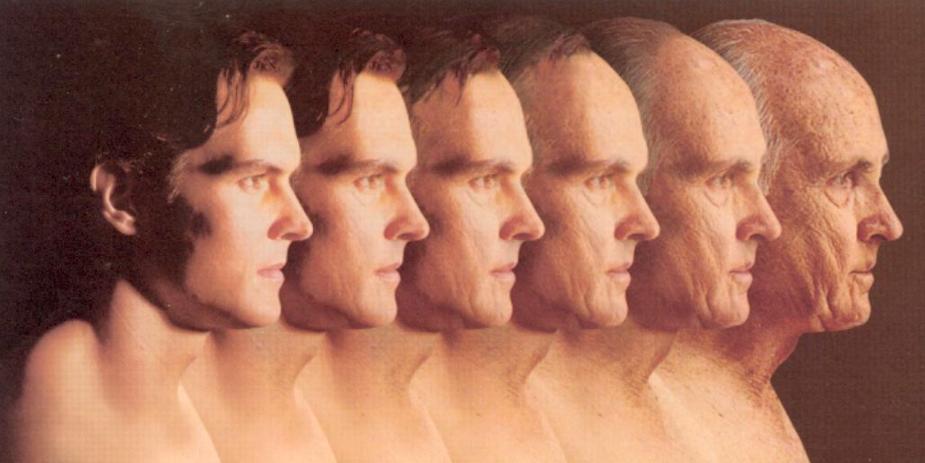 هكذا يسعى العلماء لمحاربة الشيخوخة Aging إنطلاقا من الديدان