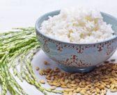 هل الأرز البارد قد يتسبب بقتلك؟ Cold rice