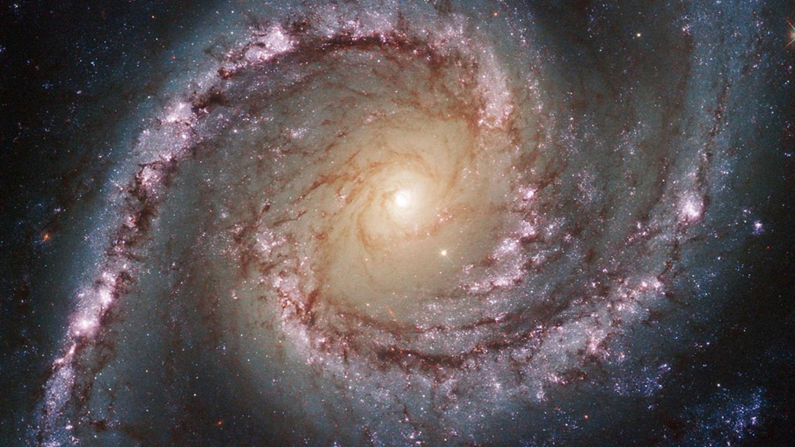 هل يمكن لنا رؤية حاضر الفضاء أم الماضي فقط ؟