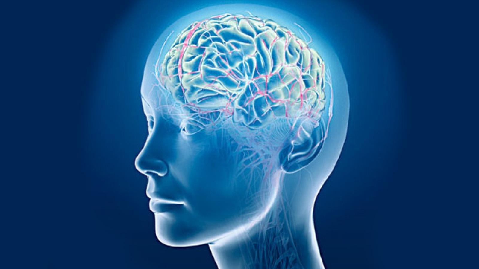 متى يصاب الدماغ البشري بالشيخوخة؟