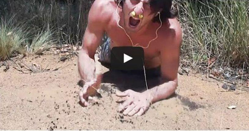 أسترالي يقدم نفسه وليمة للنمل الأبيض