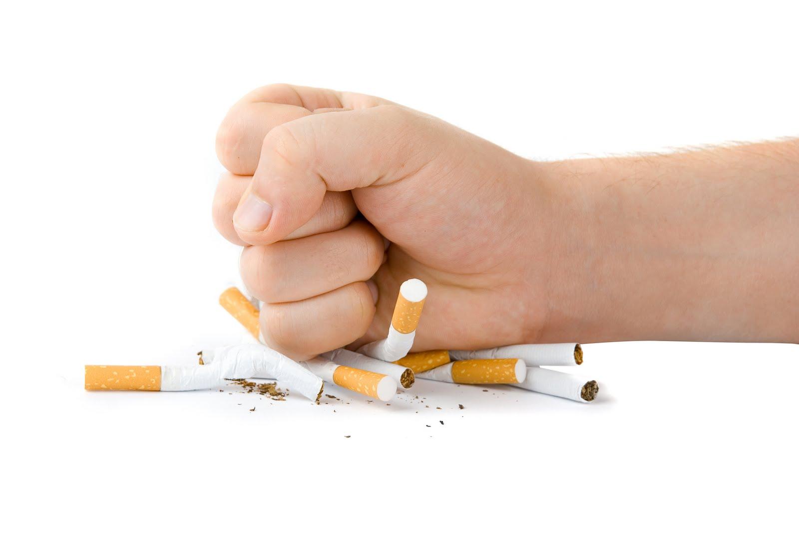 تقرير يحث الدول الاسلامية لمنع التدخين